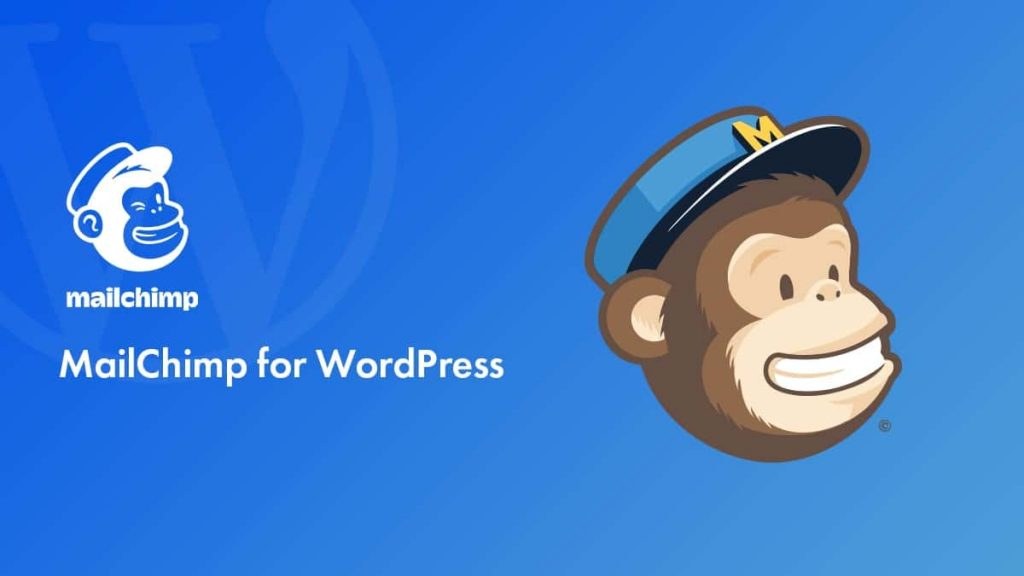 MailChimp is one of the most popular plugins for WordPress.