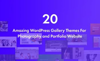 20 Recommened WordPress Gallery Themes For Photography And Portfolio Websites 2020