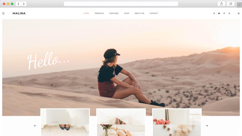 17. Malina AdSense Optimized WordPress Themes