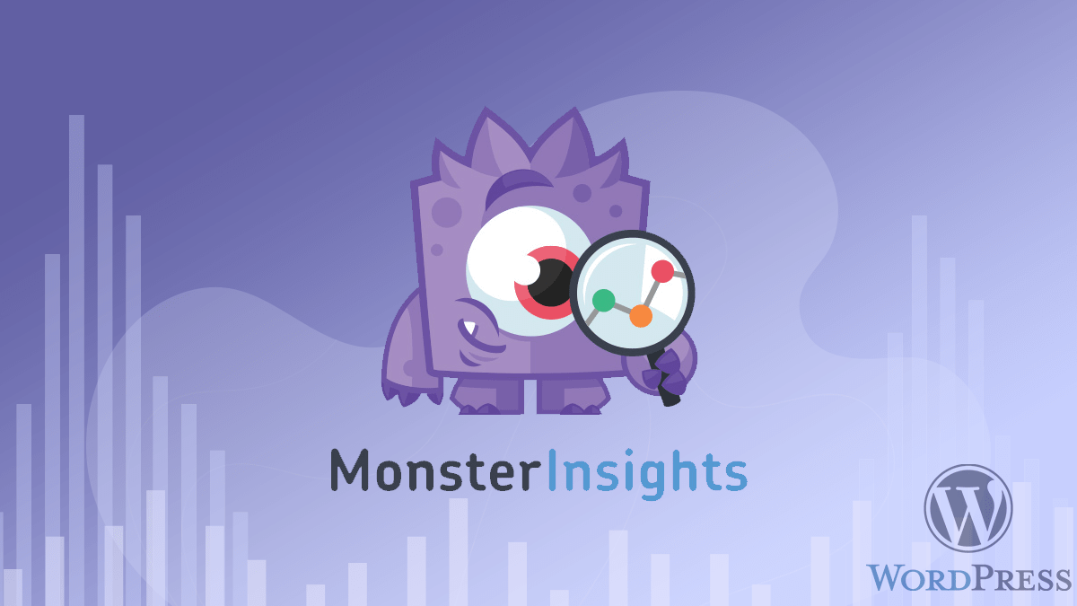 MosterInsights is the another most popular WordPress plugin