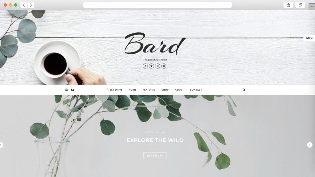 Bard Free WordPress Themes