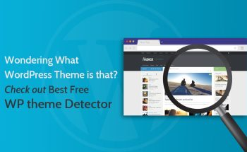 best-free-wp-theme-detector