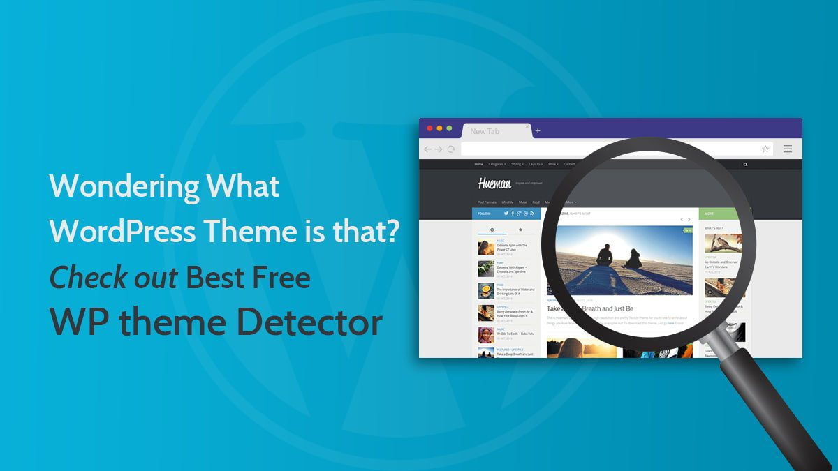best-free-wp-theme-detector